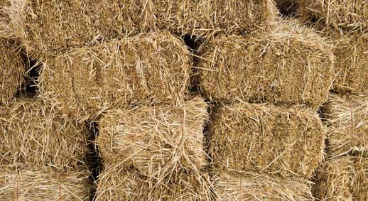 square-bales