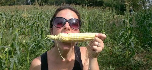 kirsten-sweet-corn-500