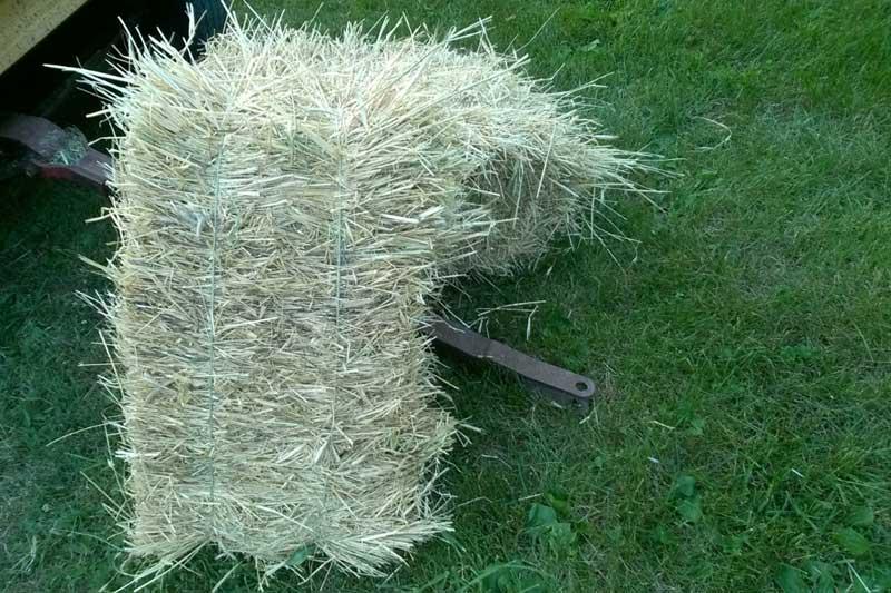 rye-straw
