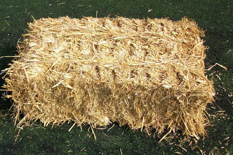 wheat-straw